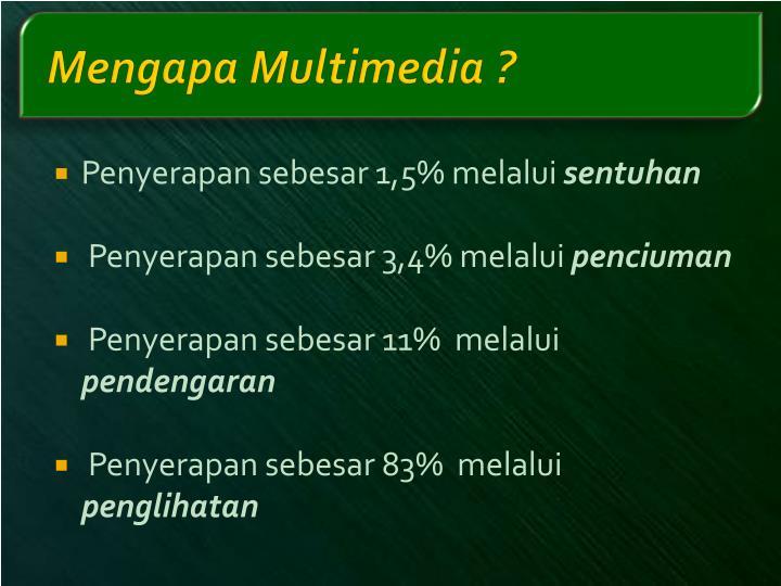 Mengapa Multimedia ?