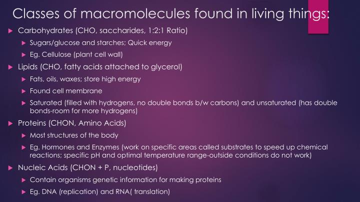 Classes of macromolecules found in living things: