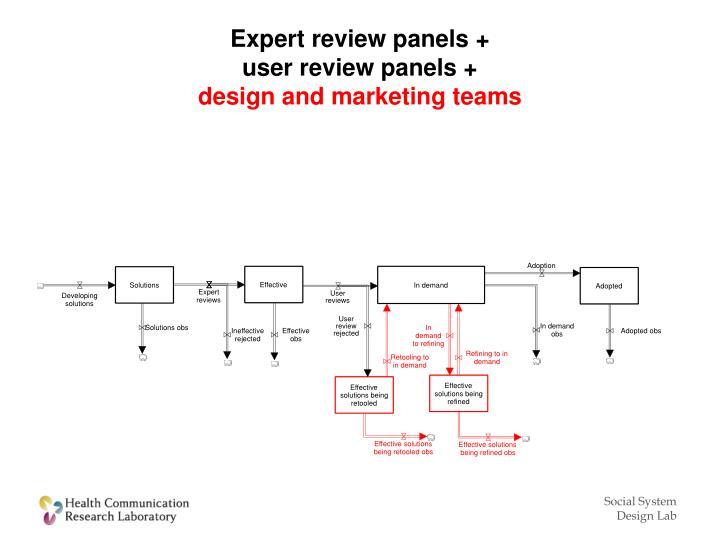 Expert review panels