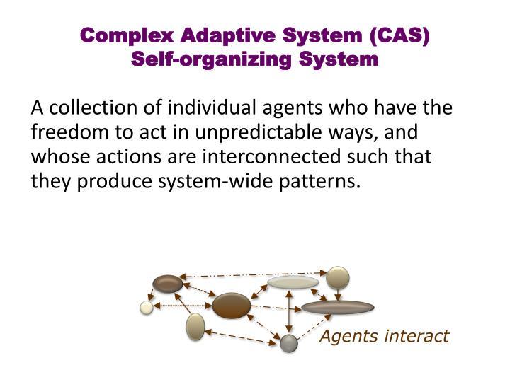 Complex Adaptive System (CAS)