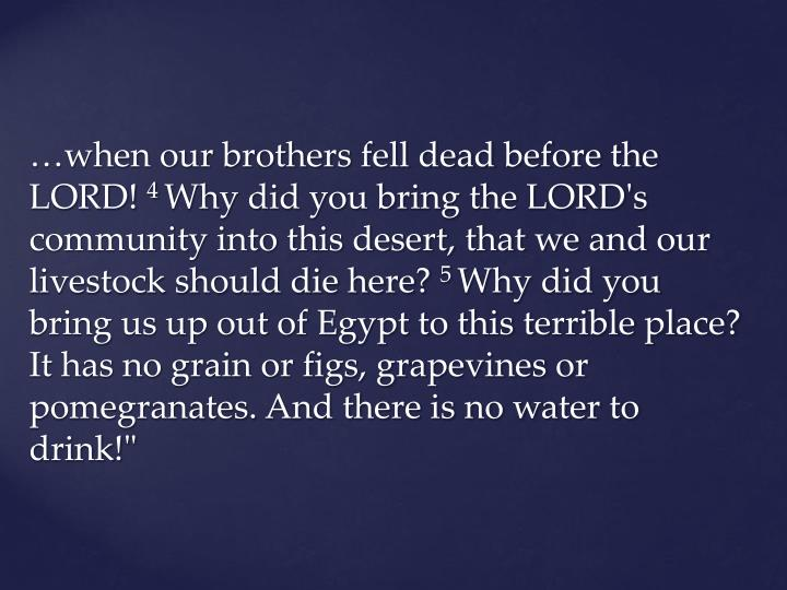 …when our brothers fell dead before the LORD!