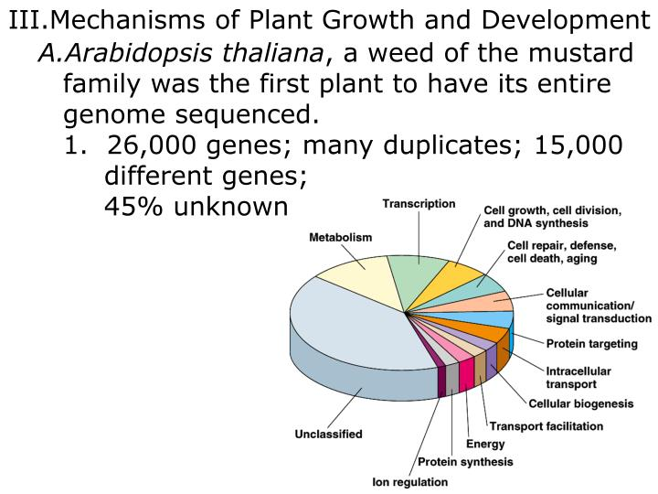 Mechanisms of Plant Growth and Development
