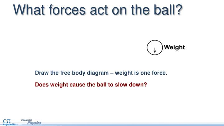 What forces act on the ball?