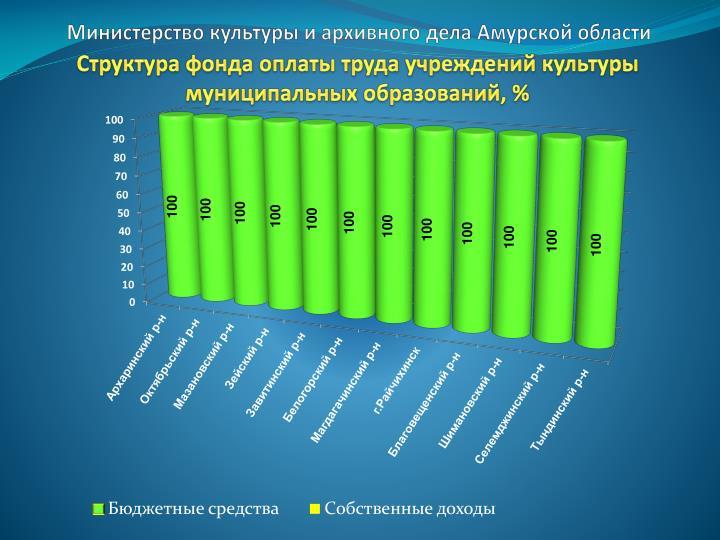 Министерство культуры и архивного дела Амурской области