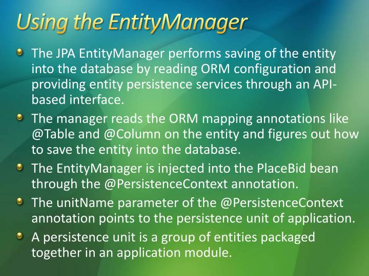 Using the EntityManager