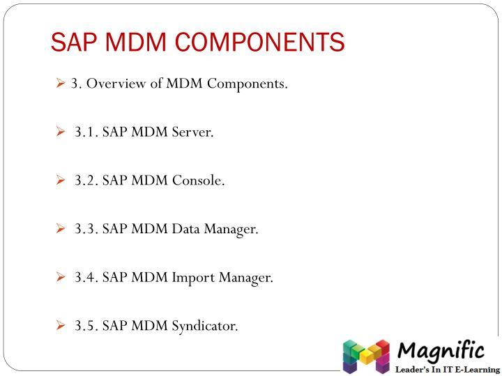 SAP MDM COMPONENTS