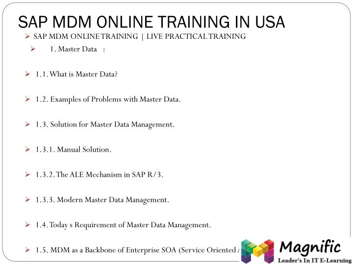 SAP MDM ONLINE TRAINING IN USA