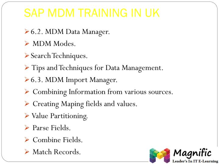 SAP MDM TRAINING IN UK