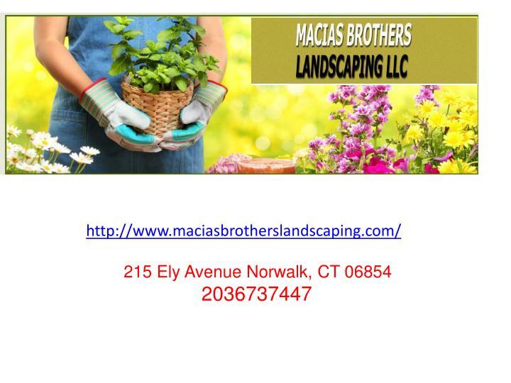 http://www.maciasbrotherslandscaping.com