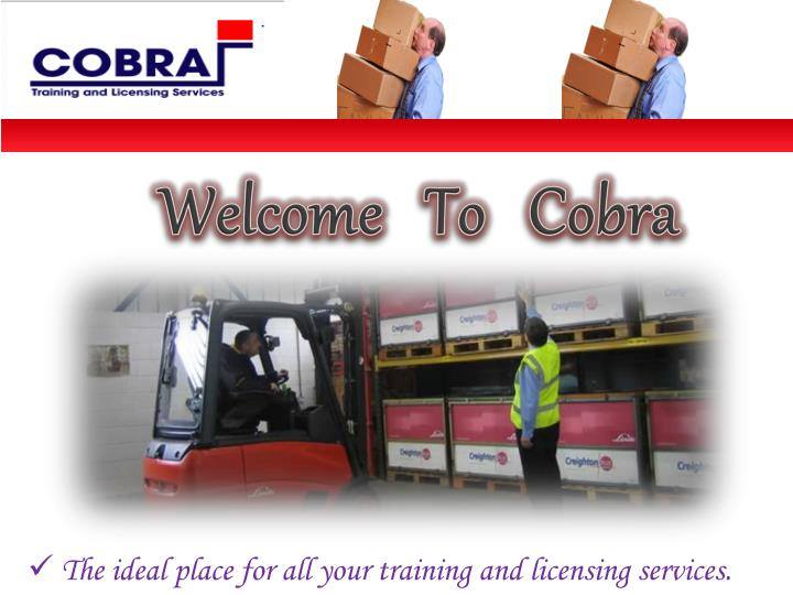 Welcome   To   Cobra