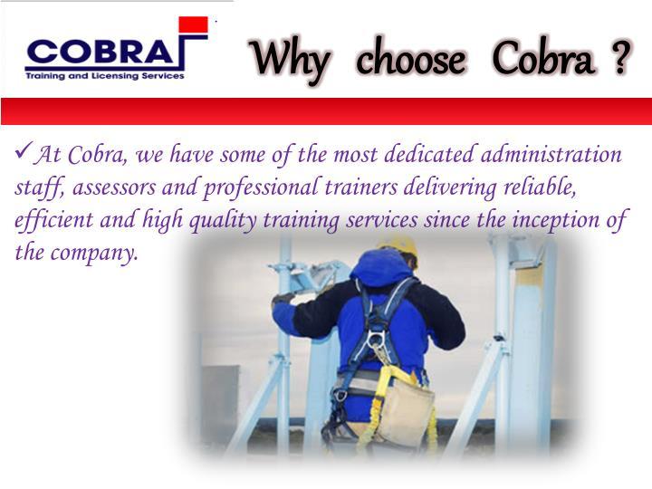 Why   choose   Cobra  ?
