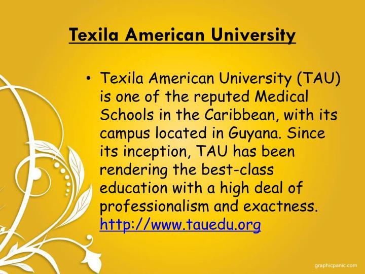 Texila