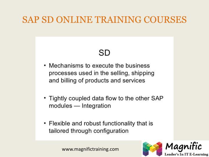 SAP SD ONLINE TRAINING COURSES