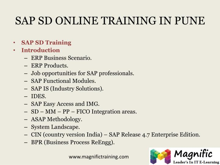 SAP SD ONLINE TRAINING IN PUNE