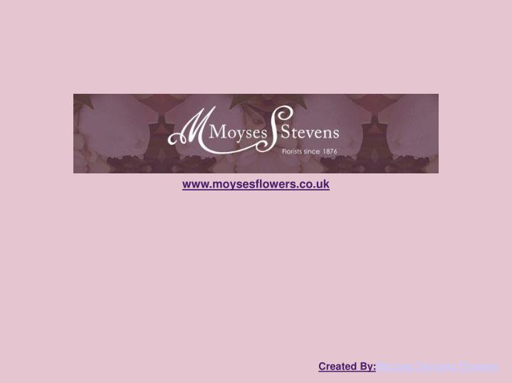 www.moysesflowers.co.uk