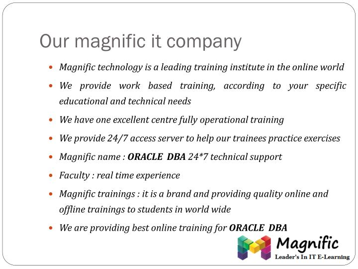 Our magnific it company