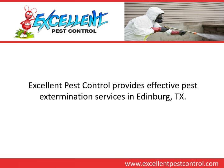 Excellent Pest Control provides effective pest extermination services in Edinburg, TX.