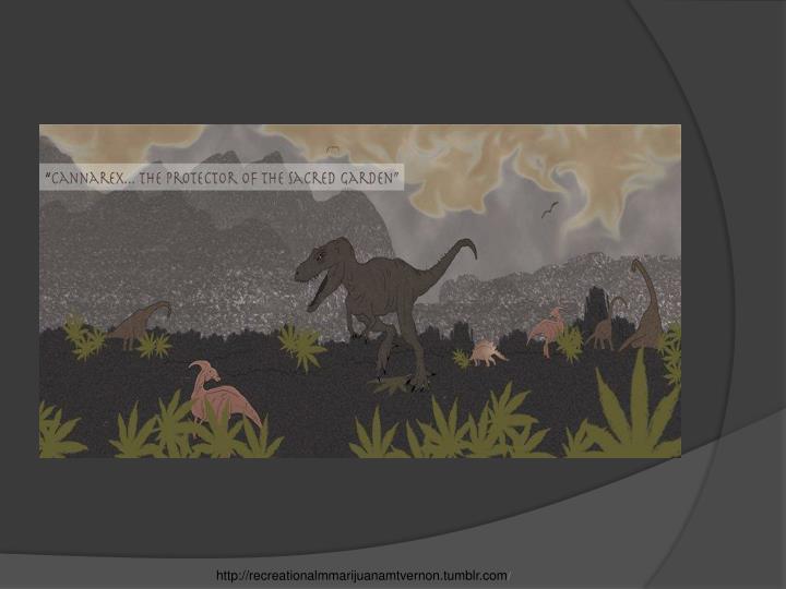 http://recreationalmmarijuanamtvernon.tumblr.com