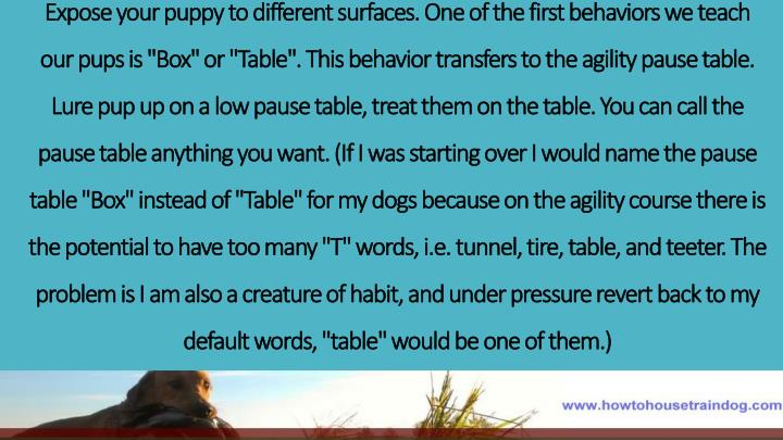 Expose your puppy to different surfaces. One of the first behaviors we teach our pups