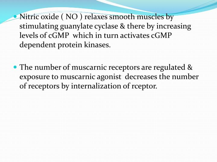 Nitric oxide ( NO ) relaxes smooth muscles by stimulating guanylate cyclase & there by increasing levels of cGMP  which in turn activates cGMP dependent protein kinases.