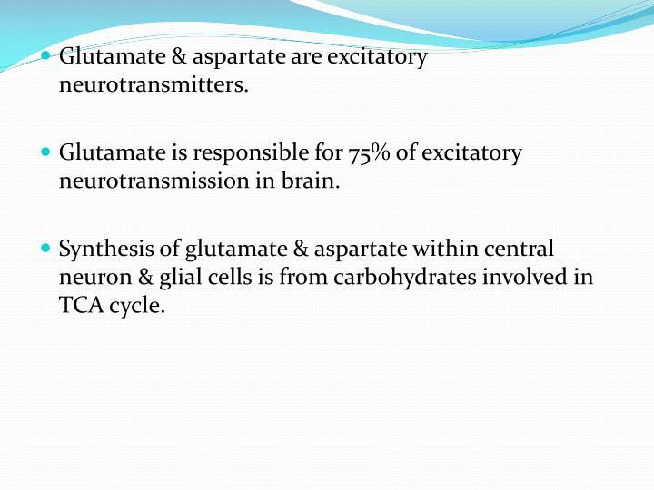 Glutamate & aspartate are excitatory neurotransmitters.