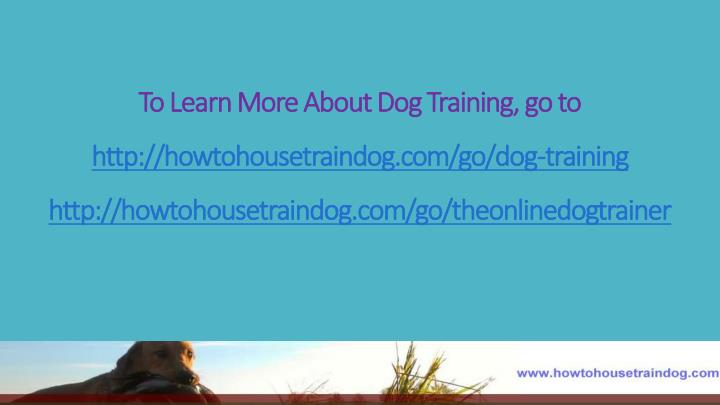 To Learn More About Dog Training, go to