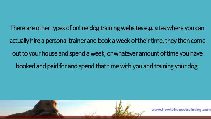 There are other types of online dog training websites e.g. sites where you can actually