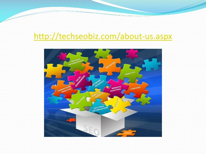 http://techseobiz.com/about-us.aspx