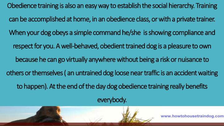 Obedience training is also an easy way to establish the social hierarchy. Training can