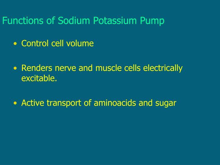 Functions of Sodium Potassium Pump