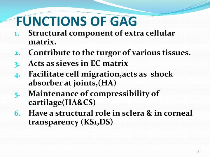 FUNCTIONS OF GAG
