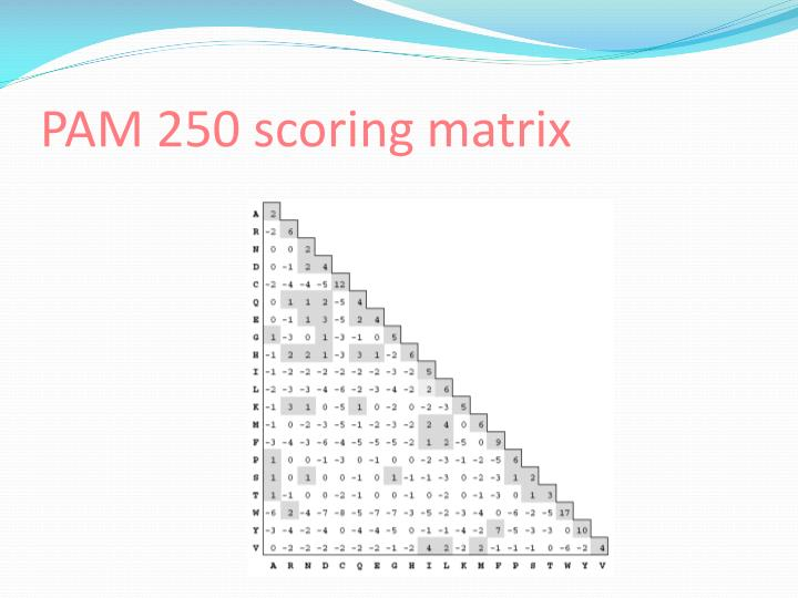 PAM 250 scoring matrix
