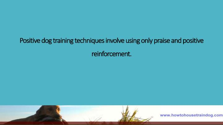 Positive dog training techniques involve using only praise and positive reinforcement.