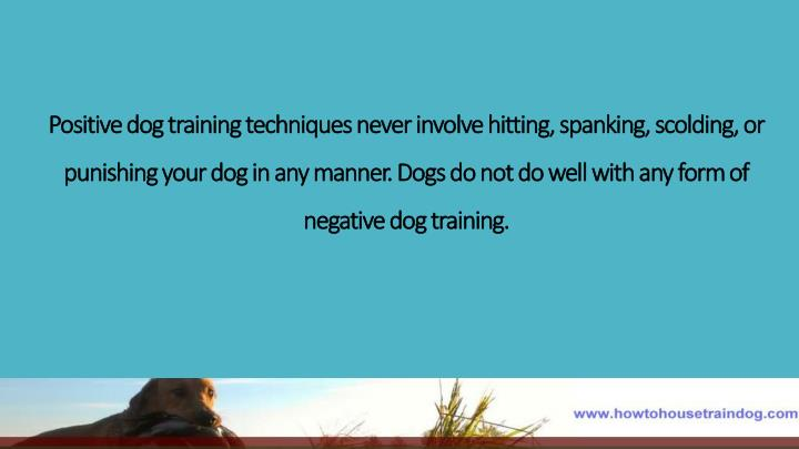 Positive dog training techniques never involve hitting, spanking, scolding, or punishing