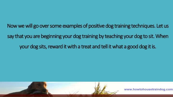 Now we will go over some examples of positive dog training techniques. Let us say