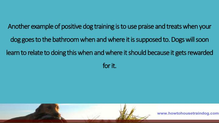 Another example of positive dog training is to use praise and treats when your dog goes