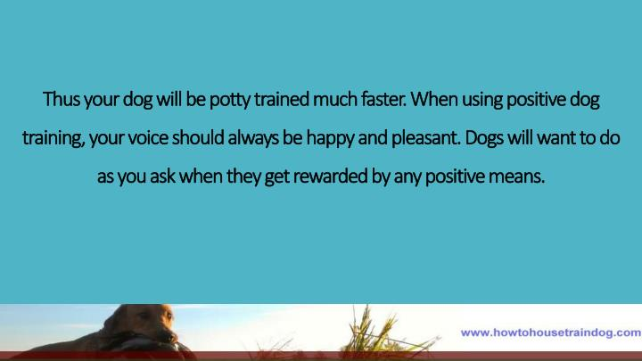 Thus your dog will be potty trained much faster. When using positive dog training, your