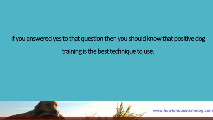 If you answered yes to that question then you should know that positive dog training is