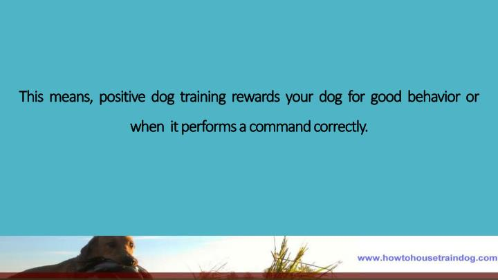 This  means,  positive  dog  training  rewards  your  dog  for  good  behavior  or  when  it