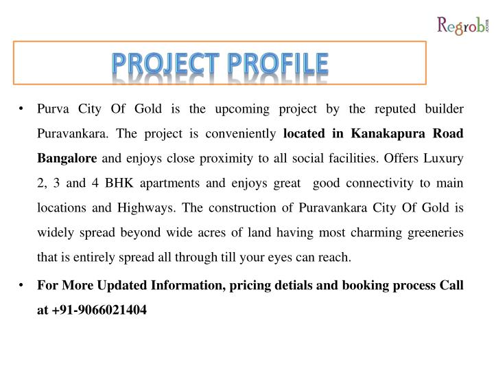 Project profile