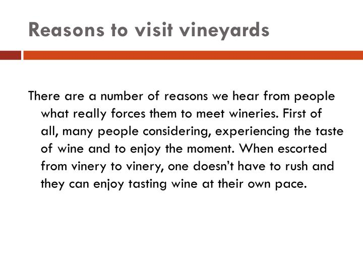 Reasons to visit vineyards