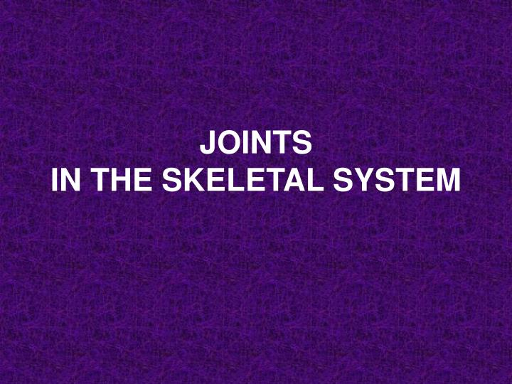 joints in the skeletal system n.