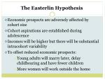 the easterlin hypothesis