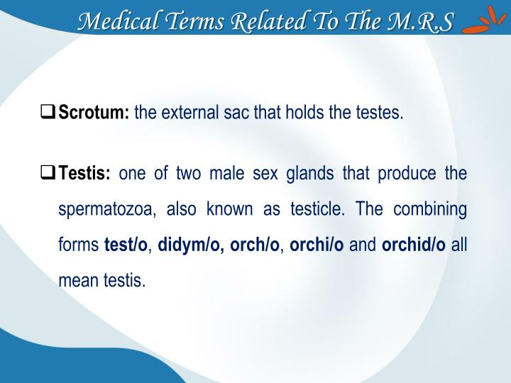 Medical Terms Related To The M.R.S
