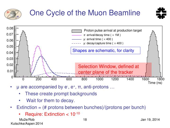 One Cycle of the Muon