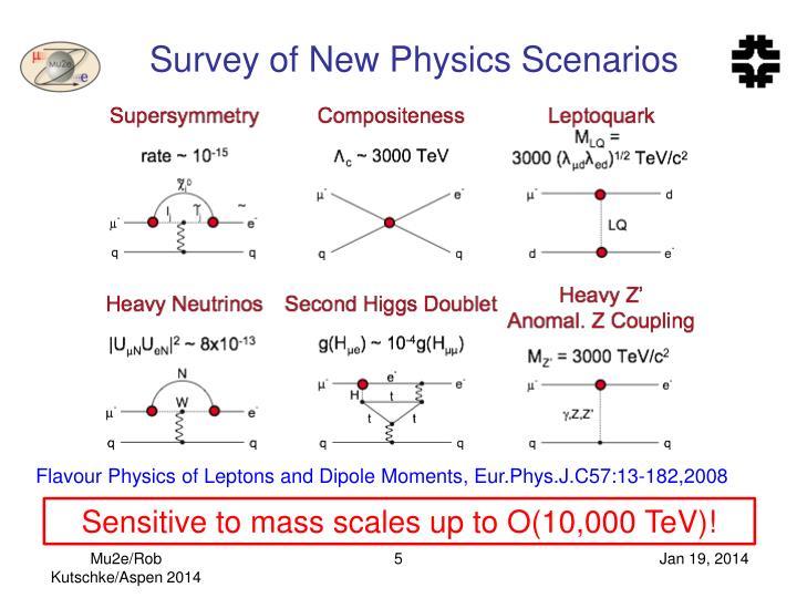 Survey of New Physics Scenarios