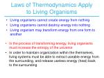 laws of thermodynamics apply to living organisms