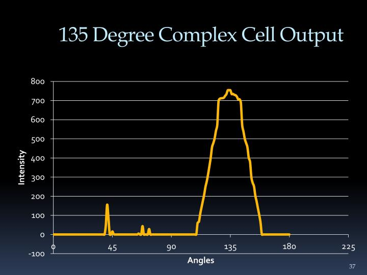 135 Degree Complex Cell Output