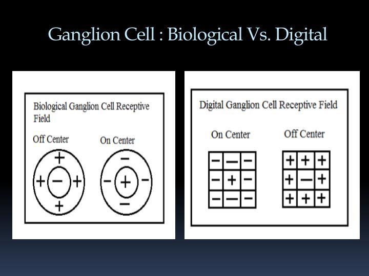Ganglion Cell : Biological Vs. Digital