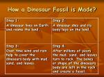 how a dinosaur fossil is made